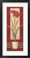 Red Flower In Pot Framed Print