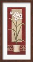 Framed White Flowers In Pot