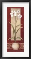 White Flowers In Pot 2 Framed Print