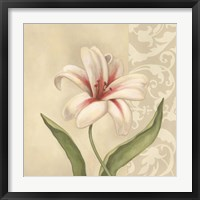 Framed Cream Lily