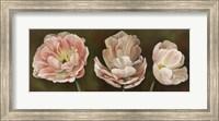Framed Summer Blossoms 2
