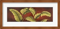 Framed Palms On Burgundy 1