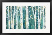 Framed Birches in Spring