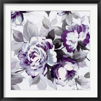Framed Scent of Roses Plum III