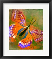 Framed Beautiful Red Butterfly