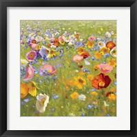 Champ de Fleur I Framed Print