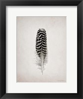 Framed Feather I BW