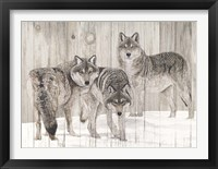 Framed Three Grey Wolves on Wood