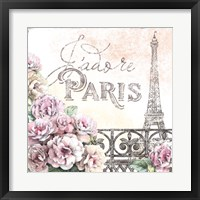 Framed Paris Roses III