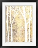 Framed Simple State I