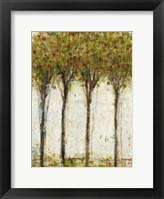 Framed Apple Orchard I