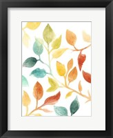 Framed Spectrum Leaves I