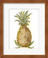 Framed Pineapple Sketch I