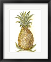 Pineapple Sketch I Framed Print
