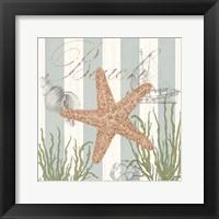Seashells by the Seashore I Framed Print