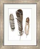 Framed Earthtone Feathers I