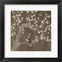 Driftwood Cherry I Framed Print