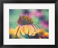Framed Mellow Yellows I
