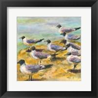 Sea Birds Watercolor II Framed Print