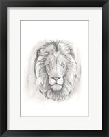 Big Cat Study III Framed Print