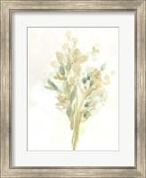 Framed Sagebrush Bouquet II