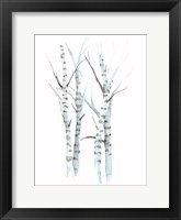 Aquarelle Birches I Framed Print