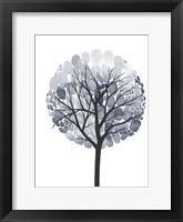 Midnight Elm I Framed Print