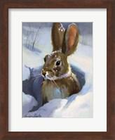 Framed Snow Bunny