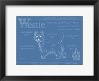 Framed Blueprint Westie