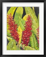 Red Tropical Flowers I Framed Print