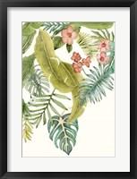 Soft Tropics II Framed Print