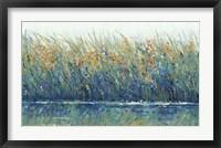 Wildflower Reflection II Framed Print