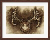Framed Rustic Antler Mount I