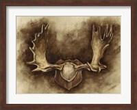 Framed Rustic Antler Mount II