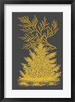 Framed Trees & Leaves II