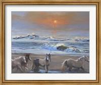 Framed Dawn Passage