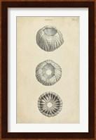 Framed Cylindrical Shells I