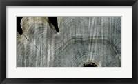 Gray Ghost I Framed Print