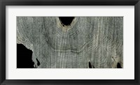 Gray Ghost II Framed Print