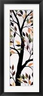 Framed Forest Moods II
