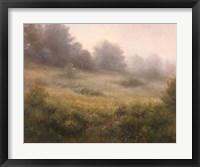 Framed Meadow In Mist