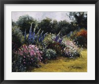 Framed Gardens At Equinox Nursery