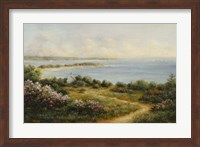Framed Cape Cod View