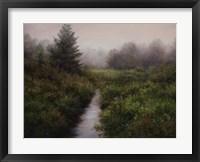 Framed Meadow Brook, Arlington