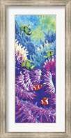 Framed Coral Reef