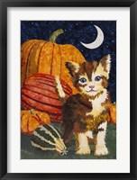Framed Calico Kitten & Pumpkins
