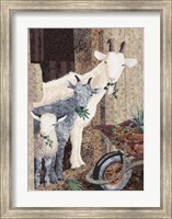 Framed Three Goats and a Wheelbarrow