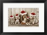 Framed Dogs Christmas