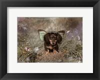 Framed Fairy Dog