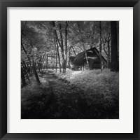 Framed Cabin in the Woods